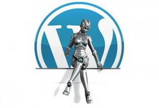 "Плагин для Wordpress ""WP Robot v3.3"""